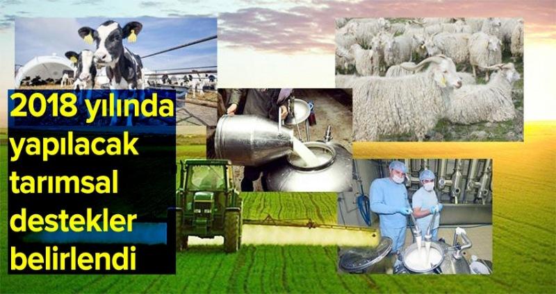 2018 yılında yapılacak tarımsal destekler belirlendi
