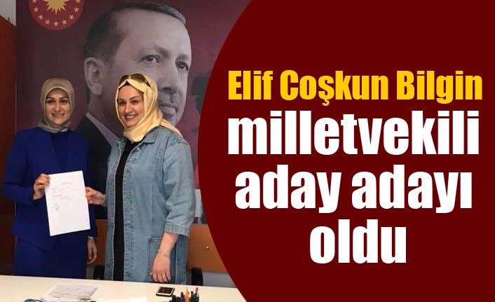 Elif Coşkun Bilgin milletvekili aday adayı oldu