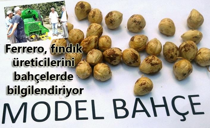 Ferrero, fındık üreticilerini bahçelerde bilgilendiriyor