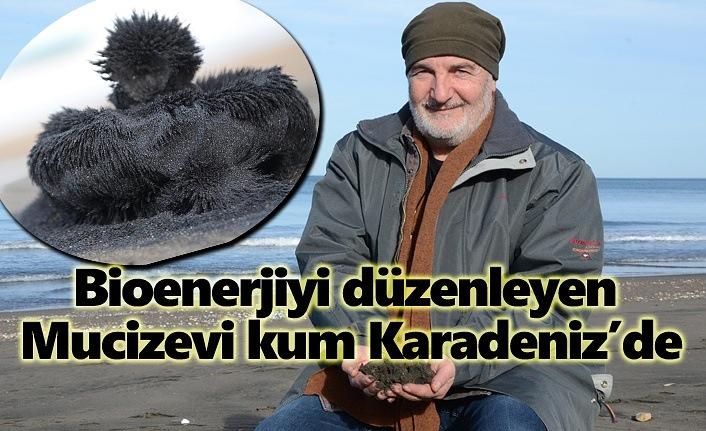 Bioenerjiyi düzenleyen mucizevi kum Karadeniz'de