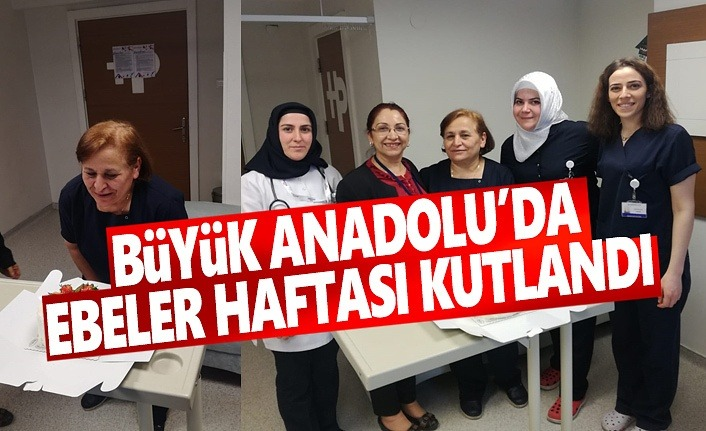 Büyük Anadolu'da Ebeler Haftası kutlandı