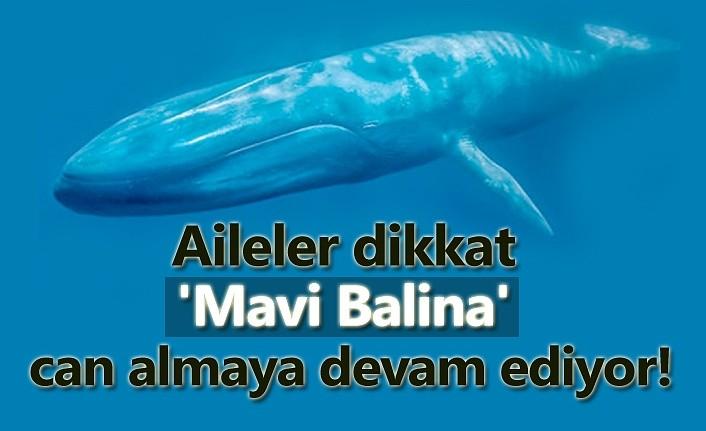 Mavi balina oyunu çocukları ölüme sürüklüyor!