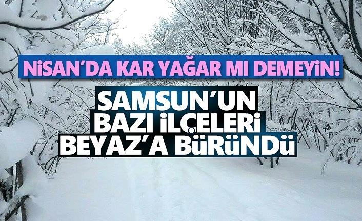Samsun'da Kar Yağışı Etkili Oldu