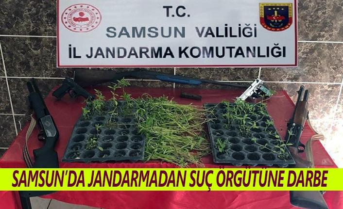 Samsun'da suç örgütüne darbe