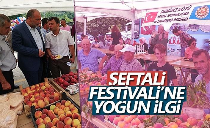 Demirciköy'de Festival Coşkusu