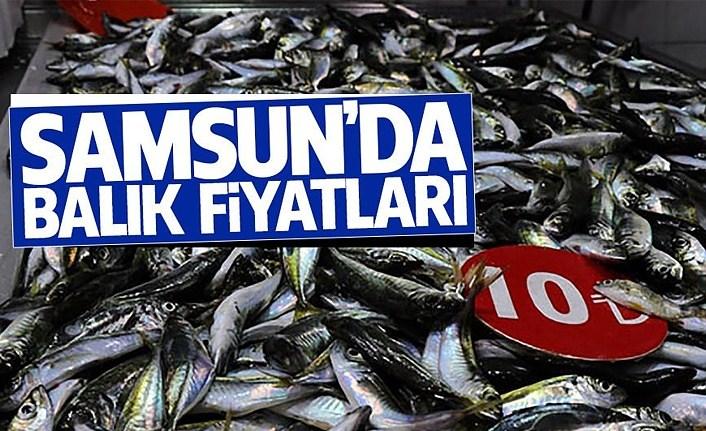 Samsun'da Balık fiyatları ne kadar?