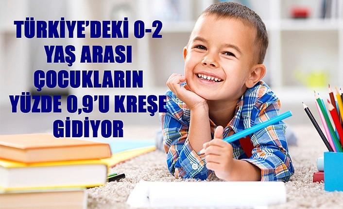 Türkiye'deki 0-2 Yaş Arası Çocukların Yüzde 0.9'u Kreşe Gidiyor