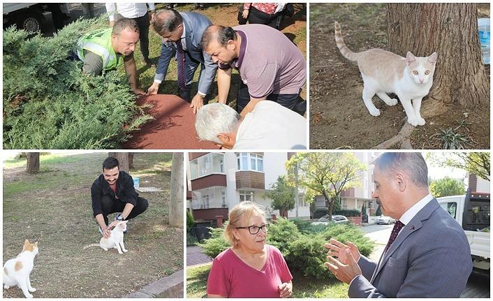 Başkan Deveci: İnsan sevgisi, hayvan sevgisi ile başlar