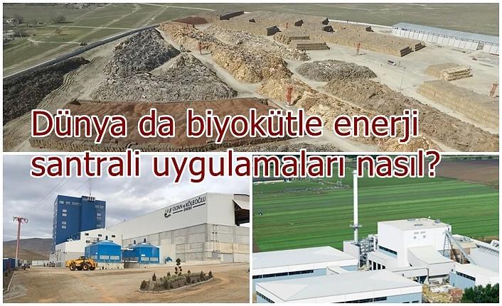 Dünya da biyokütle enerji santrali uygulamaları nasıl?