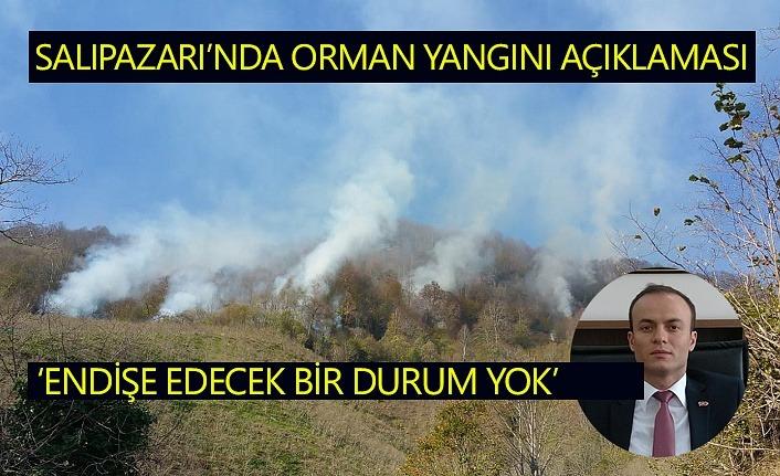 Salıpazarı'nda yaşanan orman yangınında endişelenecek durum yok
