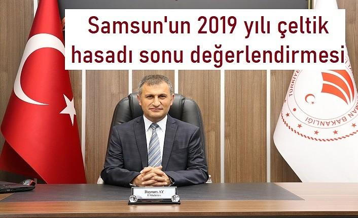Samsun'un 2019 yılı çeltik hasadı sonu değerlendirmesi