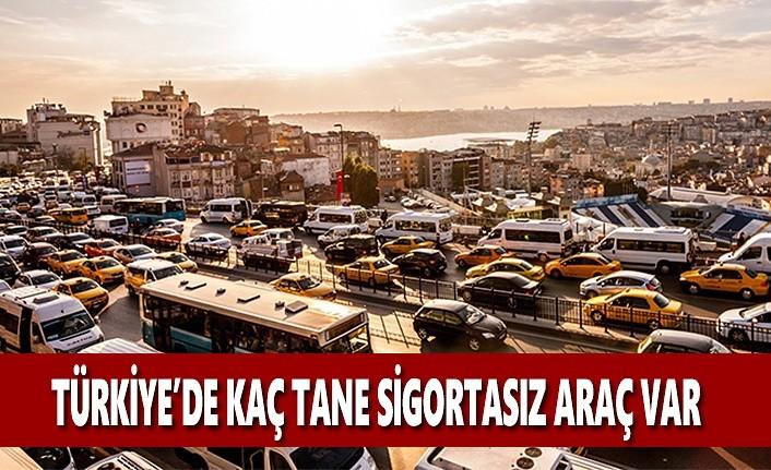 Palandöken Açıkladı:Türkiye'de Kaç Tane Sigortasız Araç Var?