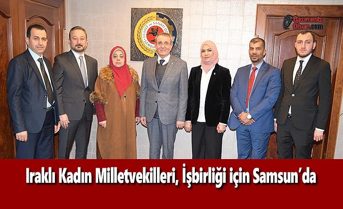 Iraklı Kadın Milletvekilleri, İşbirliği için Samsun'da