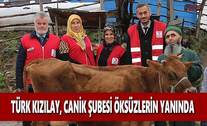 Türk Kızılayı Canik Şubesi Öksüzlerin Yanında