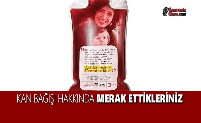 Kan Bağışı Hakkında Merak Ettikleriniz