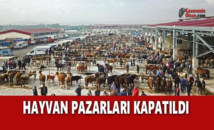 Hayvan Satış Yerleri Kapatıldı