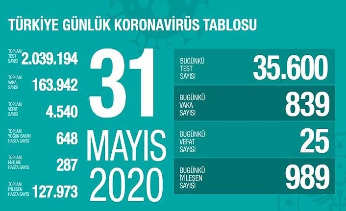 31 Mayıs Türkiye Koronavirüs raporu