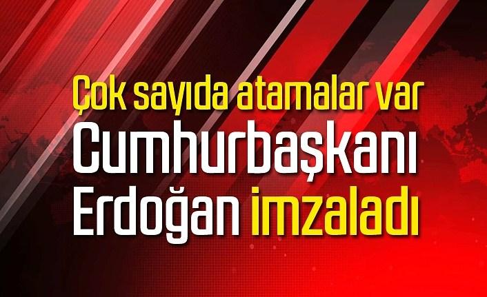 Cumhurbaşkanı Erdoğan imzaladı, çok sayıda atamalar var