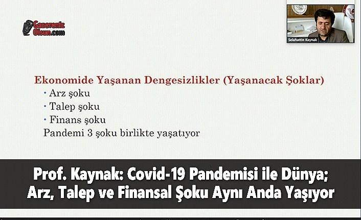 Prof. Kaynak: Covid-19 Pandemisi ile Dünya; Arz, Talep ve Finansal Şoku Aynı Anda Yaşıyor