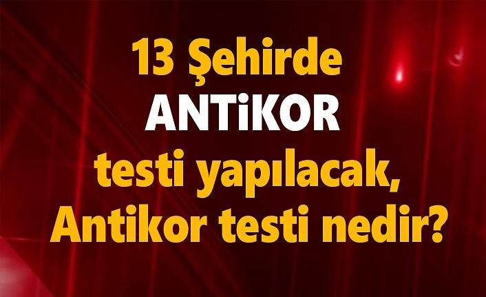 13 Şehirde antikor testi yapılacak, antikor testi nedir?