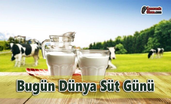 Bugün Dünya Süt Günü