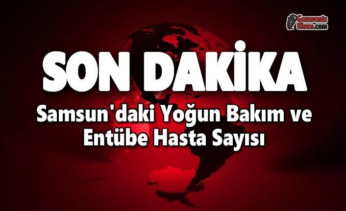 Samsun'daki Yoğun Bakım ve Entübe Hasta Sayısı