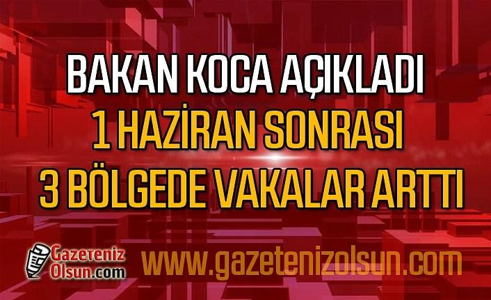 Türkiye'de koronavirüsün azaldığı ve arttığı il ve bölgeler