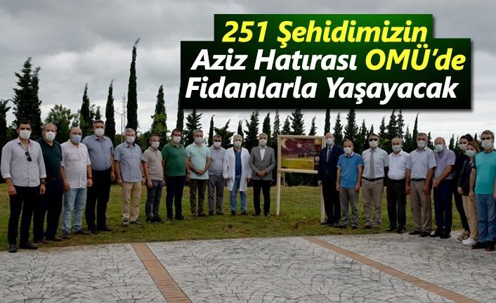 251 Şehidimizin Aziz Hatırası OMÜ'de Dikilen Fidanlarda Yaşayacak