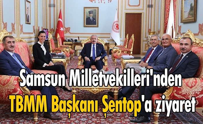 Samsun Milletvekilleri'nden TBMM Başkanı Şentop'a ziyaret