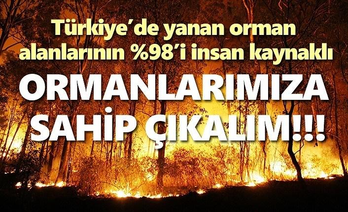 Türkiye'de yanan orman alanı büyüklüğü 2 kat arttı!