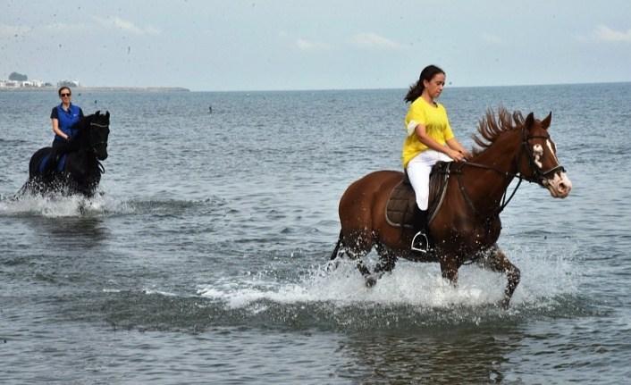 Atlara tuzlu su iyi gelir mi? Atlar kum banyosu yapar mı?