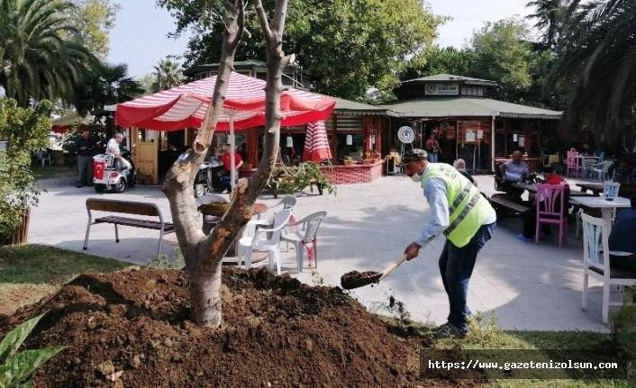 Büyükşehirden Sakatlar Derneği bahçesine çevre düzenlemesi - Samsun Haber
