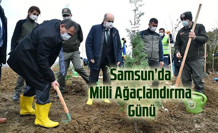 Samsun'da Milli Ağaçlandırma Günü