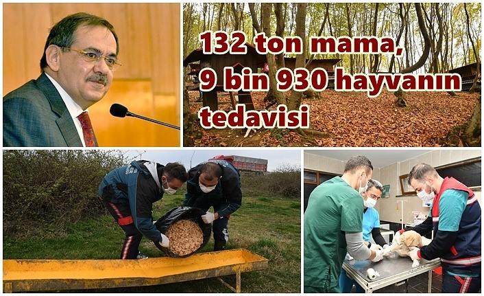132 ton mama, 9 bin 930 hayvanın tedavisi - Samsun Haber