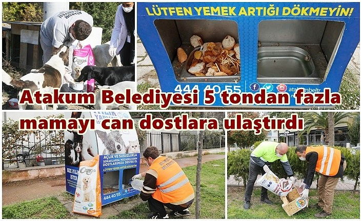 Atakum Belediyesi'nin patili dostlara 5 ton mama