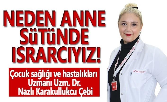 Büyük Anadolu Hastaneleri'nden Anne Sütünün Önemi