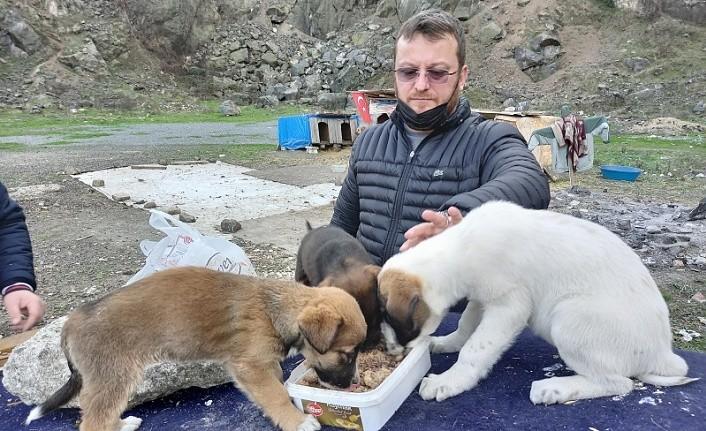 Canik Hayvanseverler Derneği sokaktaki dostları unutmadılar