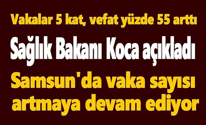 Samsun'da vaka sayısı artmaya devam ediyor