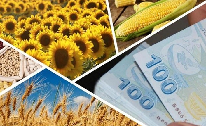 Tarıma Dayalı Ekonomik Yatırımlar Uygulama Rehberi yayımlandı