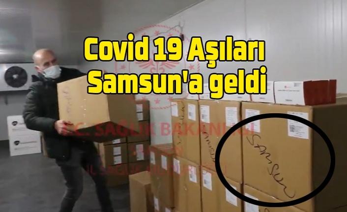 Covid 19 Aşıları Samsun'a geldi - Samsun'da aşılama ne zaman başlayacak? Samsun Haber