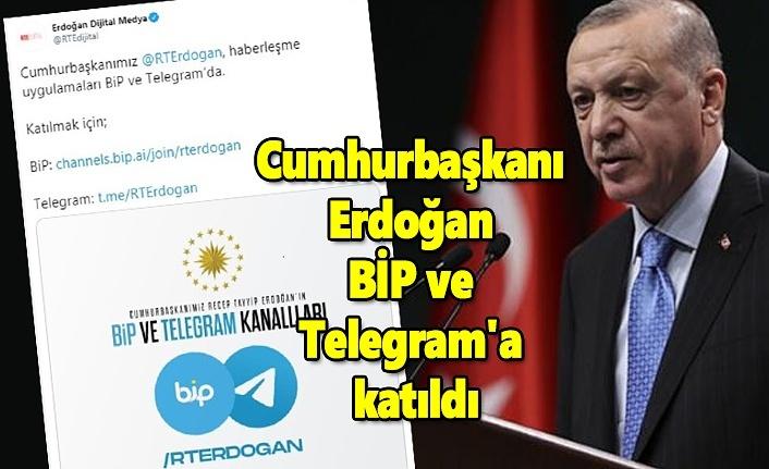 Cumhurbaşkanı Erdoğan BİP ve Telegram'a katıldı