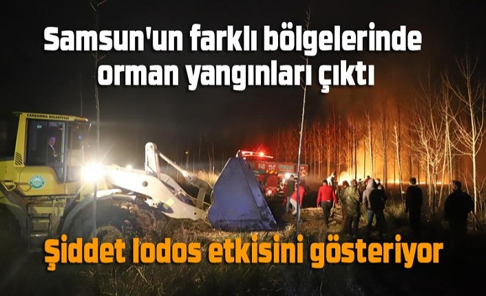 Samsun'un farklı bölgelerinde orman yangınları çıktı - Samsun Haber