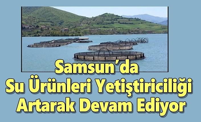Samsun'da Su Ürünleri Yetiştiriciliği Artarak Devam Ediyor