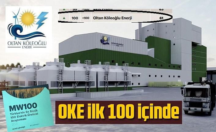 Türkiye'nin en büyük elektrik üreticileri belli oldu, OKE ilk yüz içinde