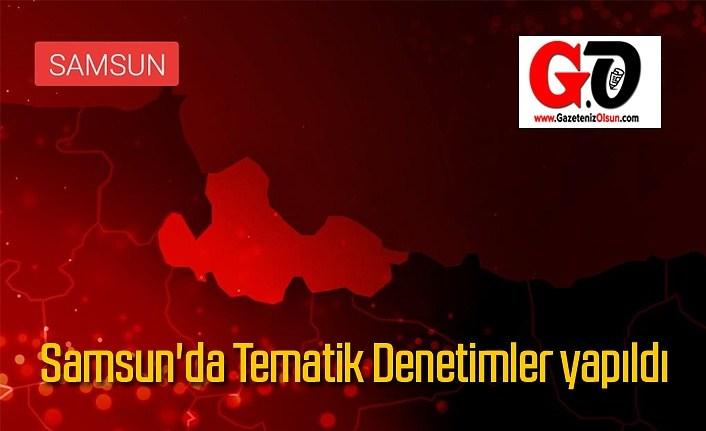 Samsun'da Tematik Denetimler yapıldı
