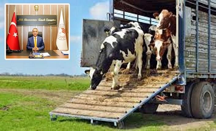 Üreticiye Koyun Keçi Vebası Hastalığı uyarısı