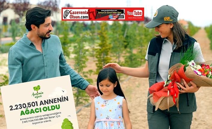 Annenin Ağacı kampanyasında 2 milyon fidan sahiplenildi