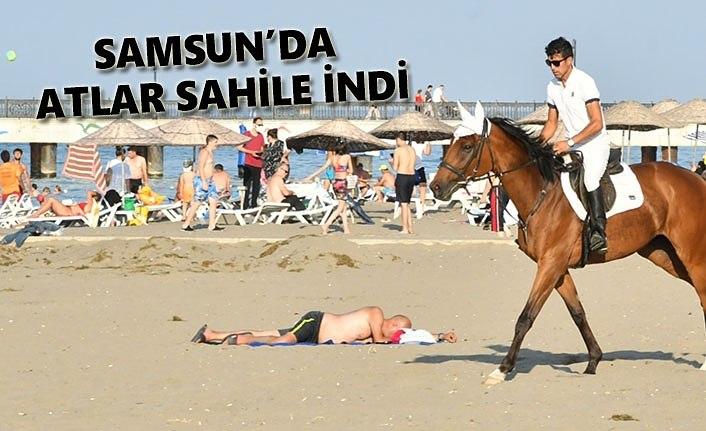 Atların deniz keyfi - Samsun Haber