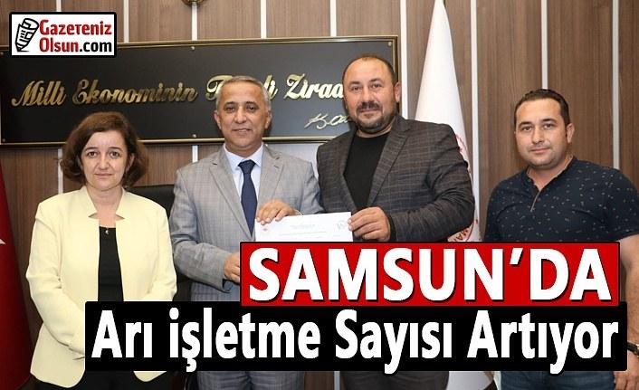 Samsun'da Arı İşletme Sayısı Artıyor