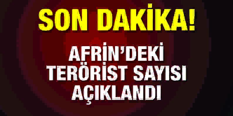 Afrin'de ne kadar terörist var?